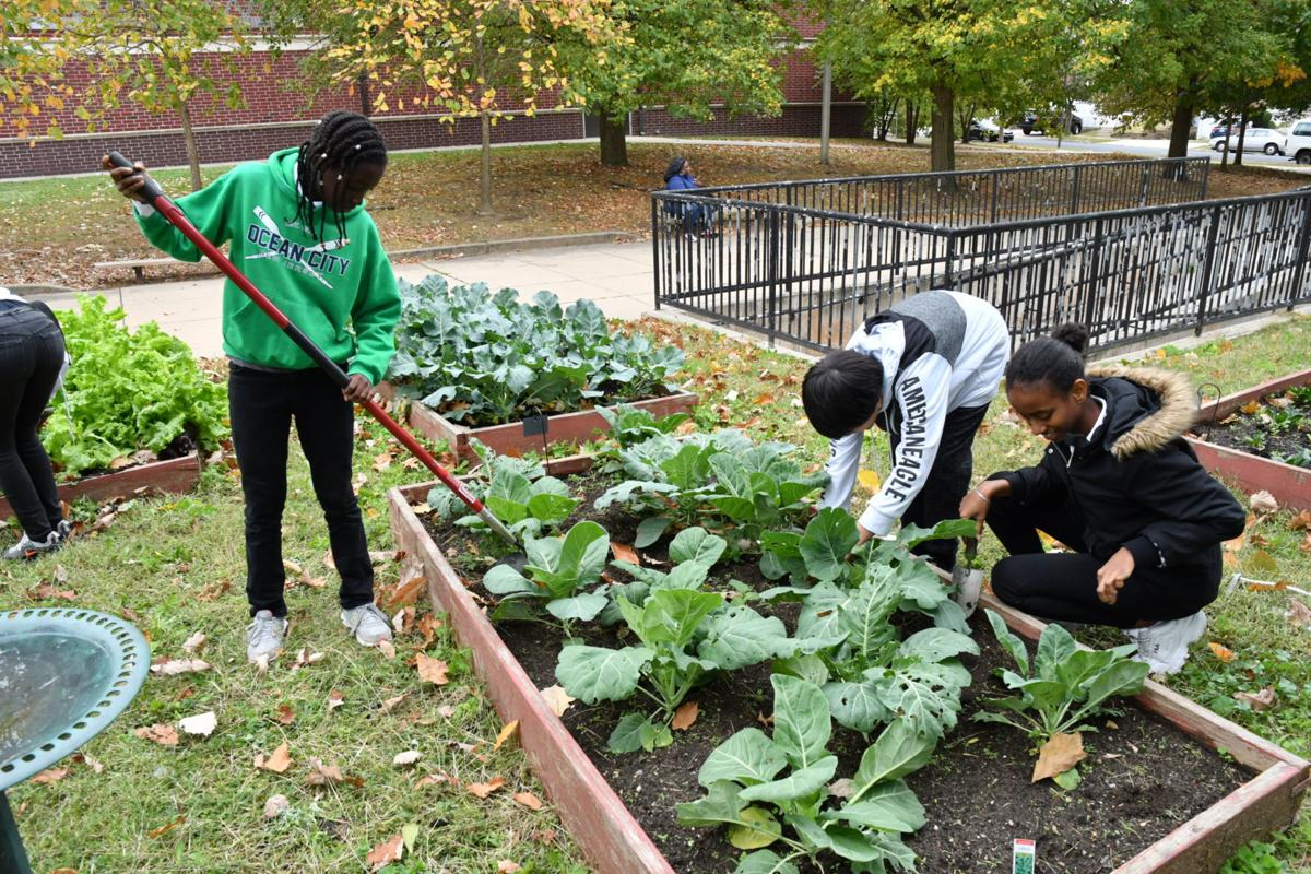 Penrose mix of programs creates well-rounded students