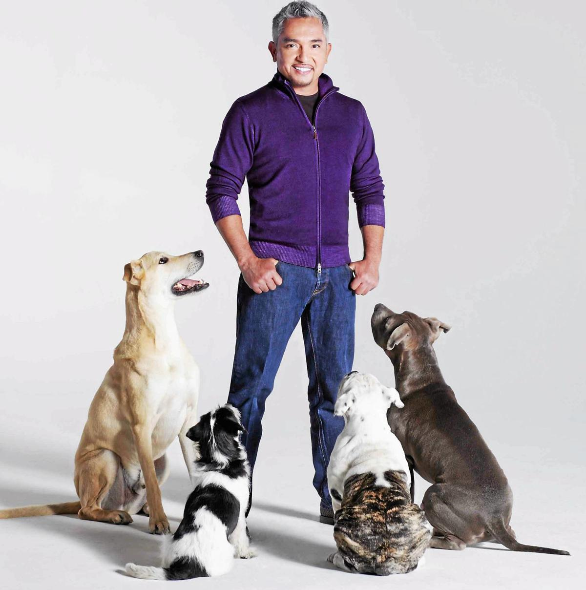 Canine behaviorist, TV star Cesar Millan appearing in Glenside's Keswick Theatre