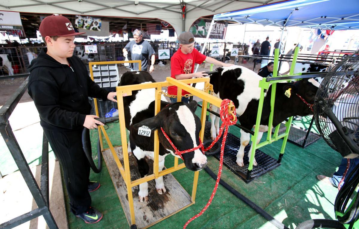 Pinal County Fair 3/20/19