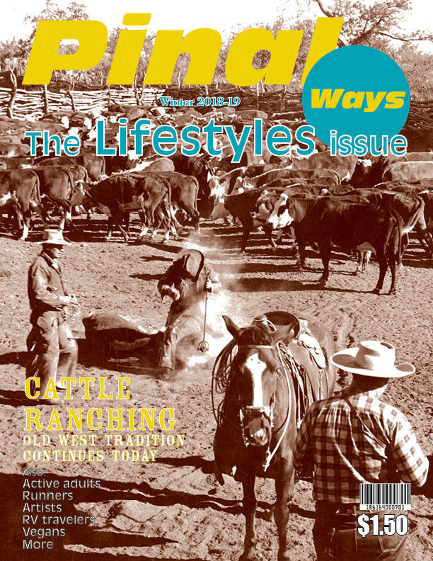 Winter Pinal Ways 2018-19 paid cover