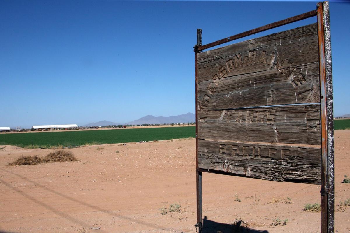 Anderson-Palmisano Farms
