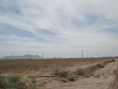 Solar farm site