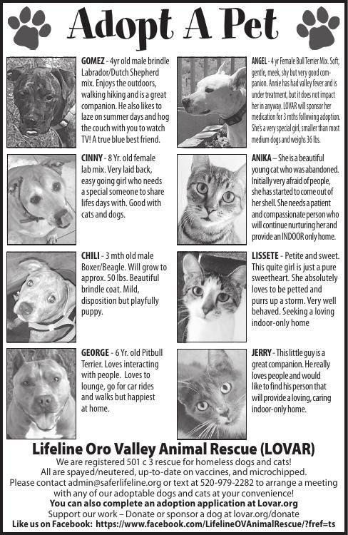 Lifeline Oro Valley Animal Rescue (LOVAR), 9/7/19