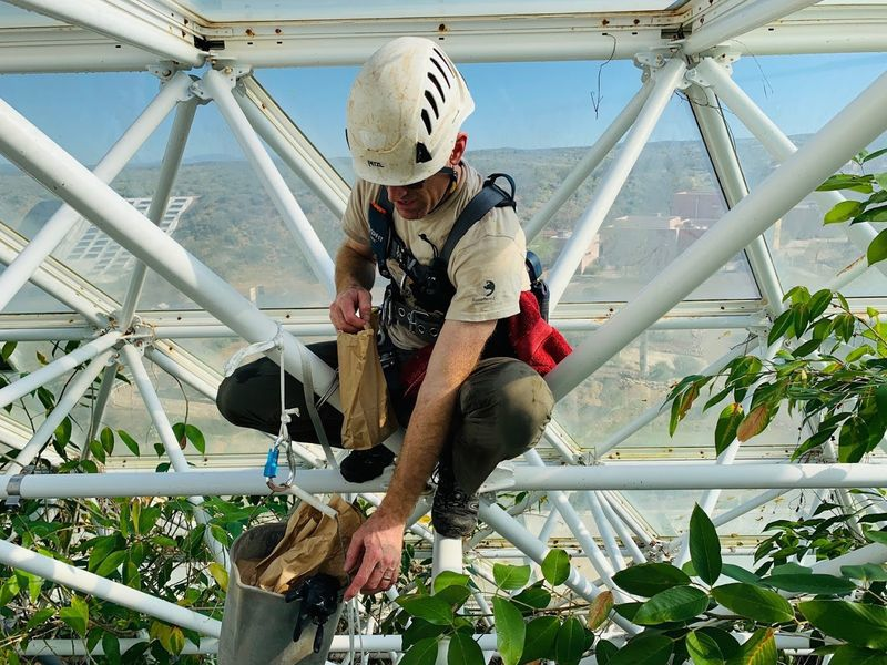 Biosphere rain forest closed during drought experiment
