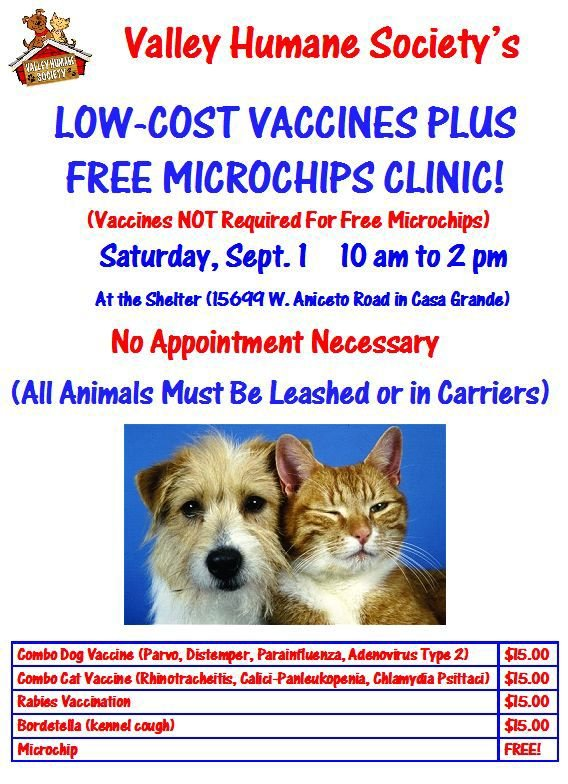 Kennel Cough Vaccine Cost >> Event Aims To Keep Dogs And Cats Healthy And Safe Area