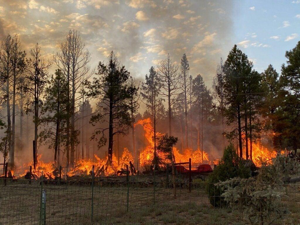 Doney Park Fire