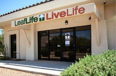 LeafLife in Casa Grande