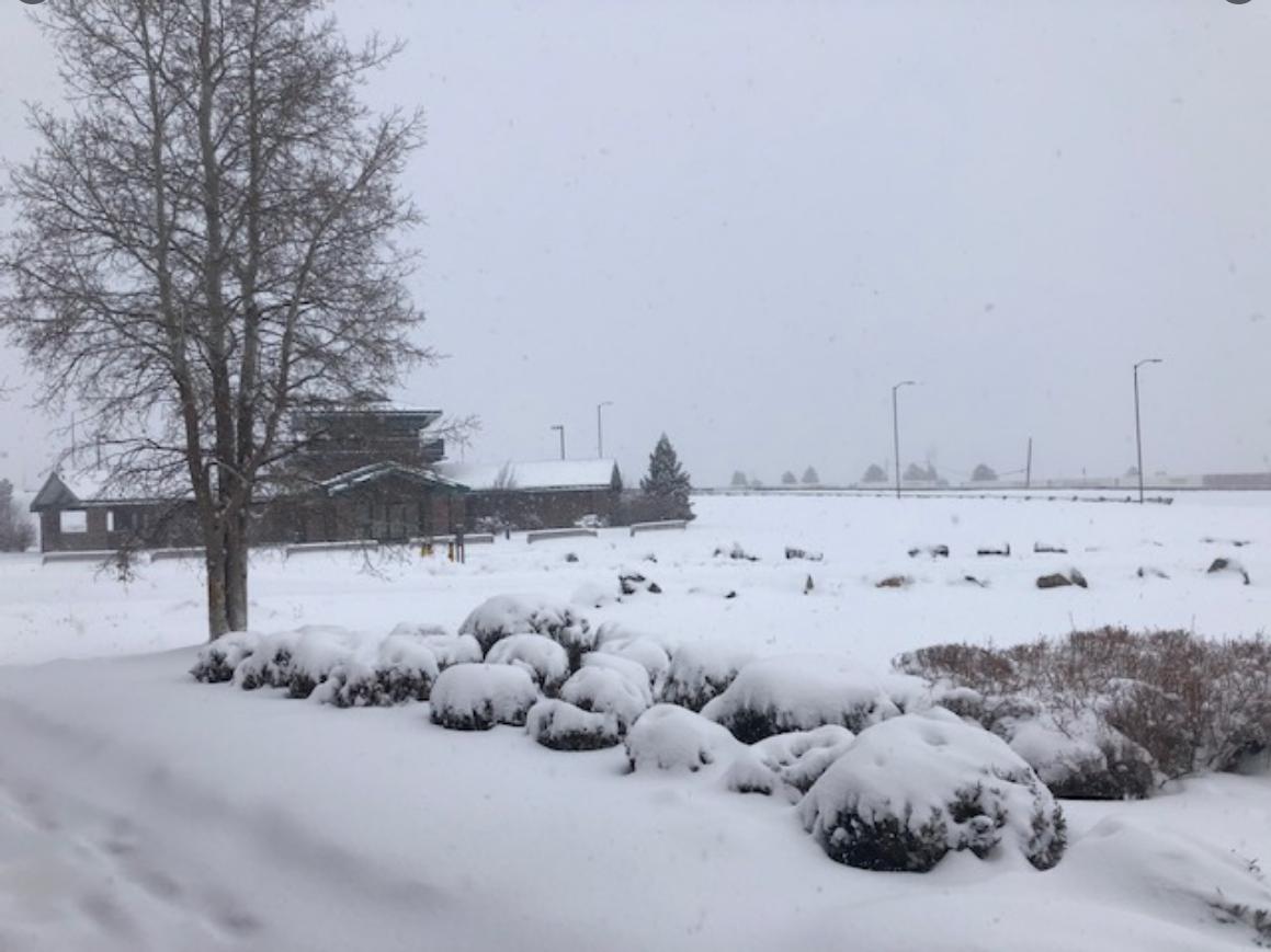 Northern Arizona Snow