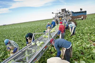 Farmworker Regs