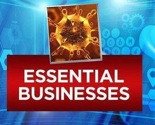 Essential Business Logo