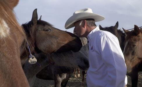 horse whisperer brings message of hope and redemption area news rh pinalcentral com Horse Whisperer Techniques Horse Whisperer Movie