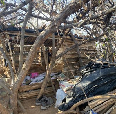 Survivalist shelter
