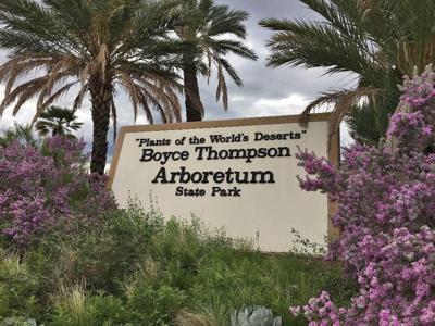 Boyce Thompson Arboretum logo
