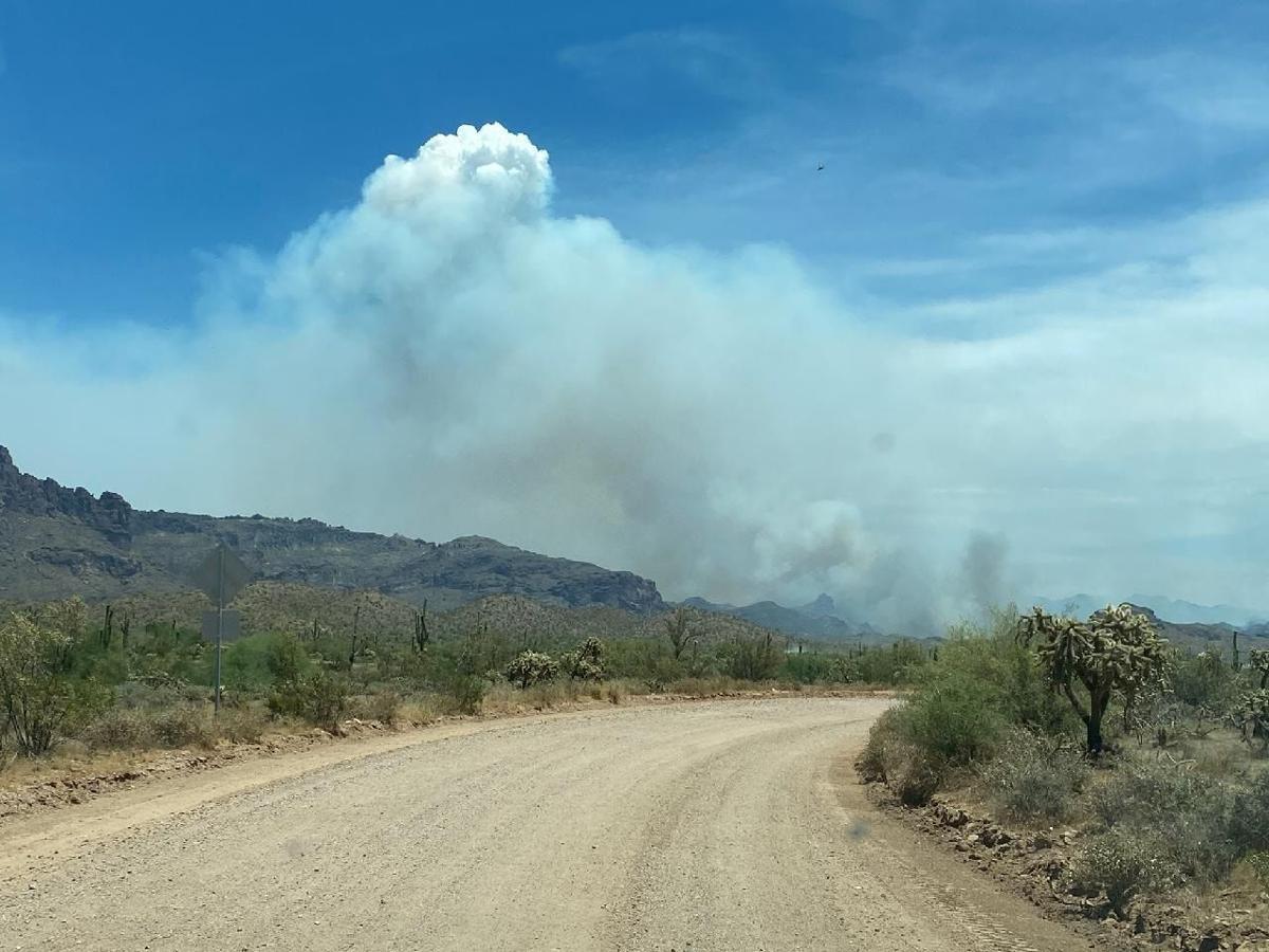Sawtooth Fire