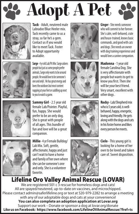 Lifeline Oro Valley Animal Rescue, 4/26/19