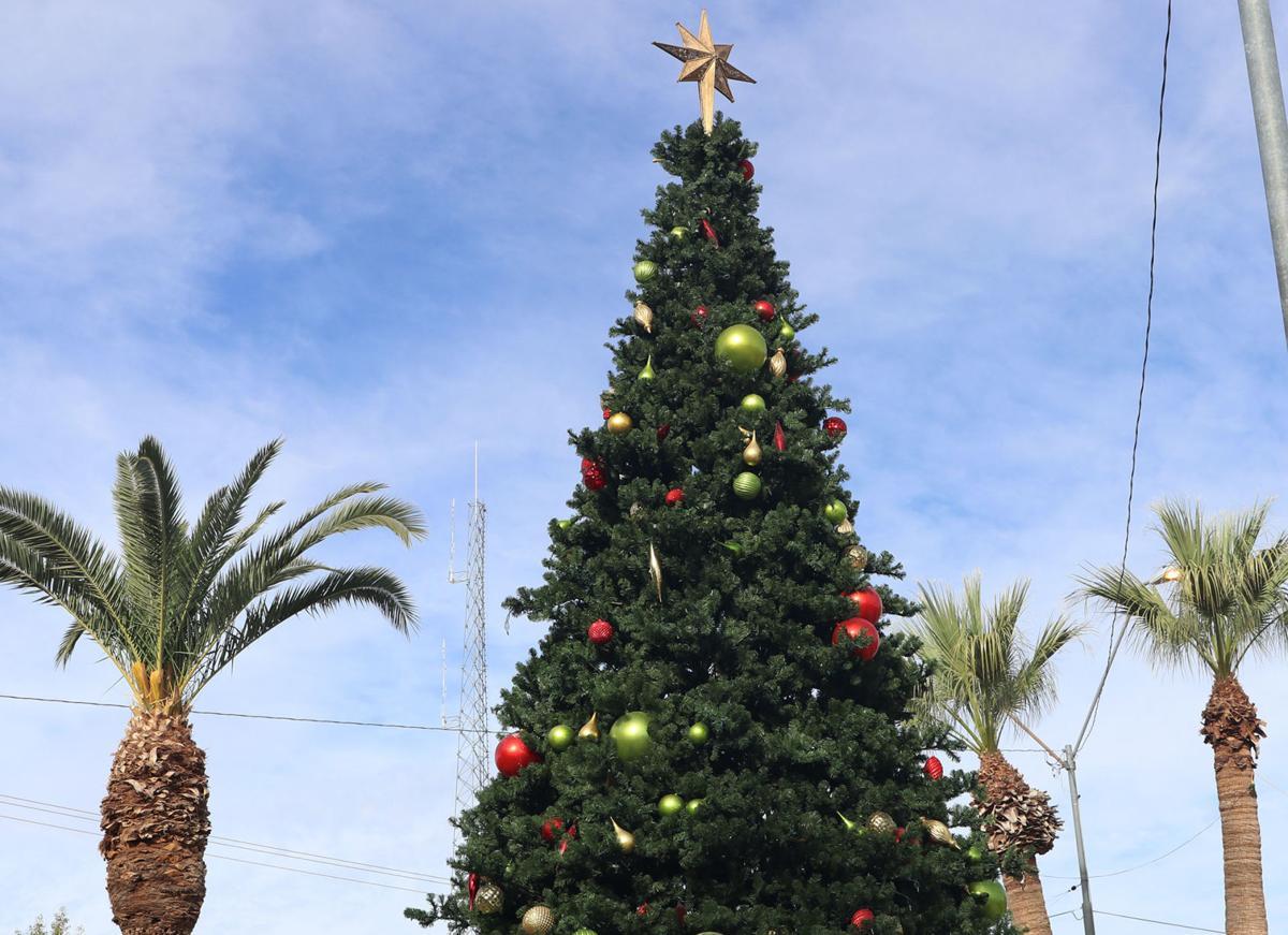Eloy Christmas tree