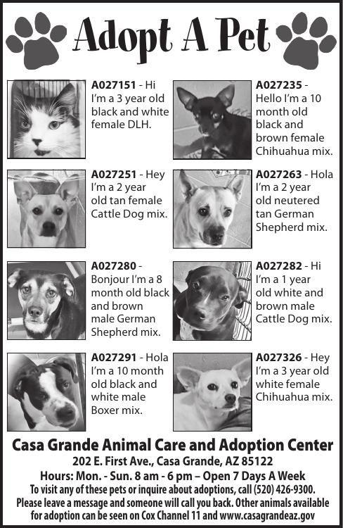 Casa Grande Animal Care and Adoption Center, 10/22/19