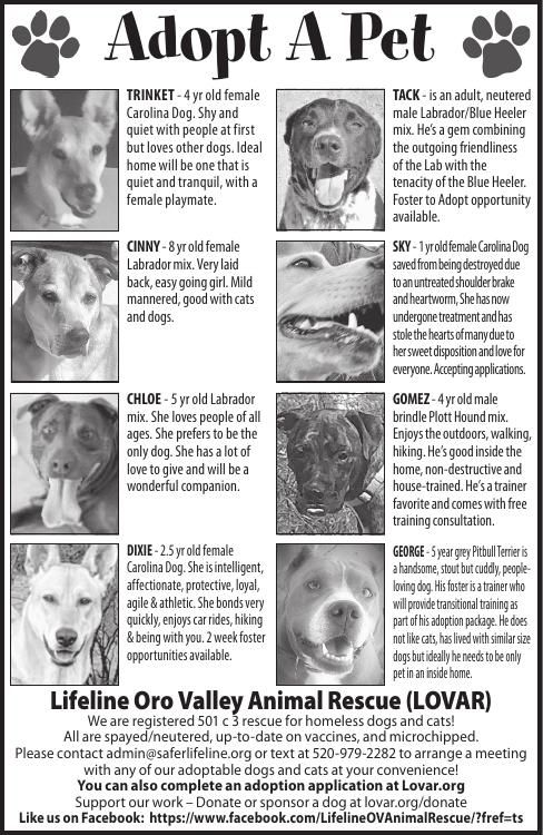 Lifeline Oro Valley Animal Rescue (LOVAR) 12/28/19