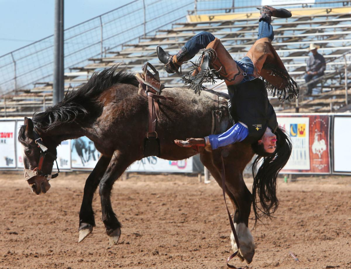 Central Arizona College Rodeo