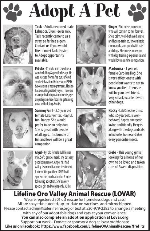 Lifeline Oro Valley Animal Rescue, 5/10/19