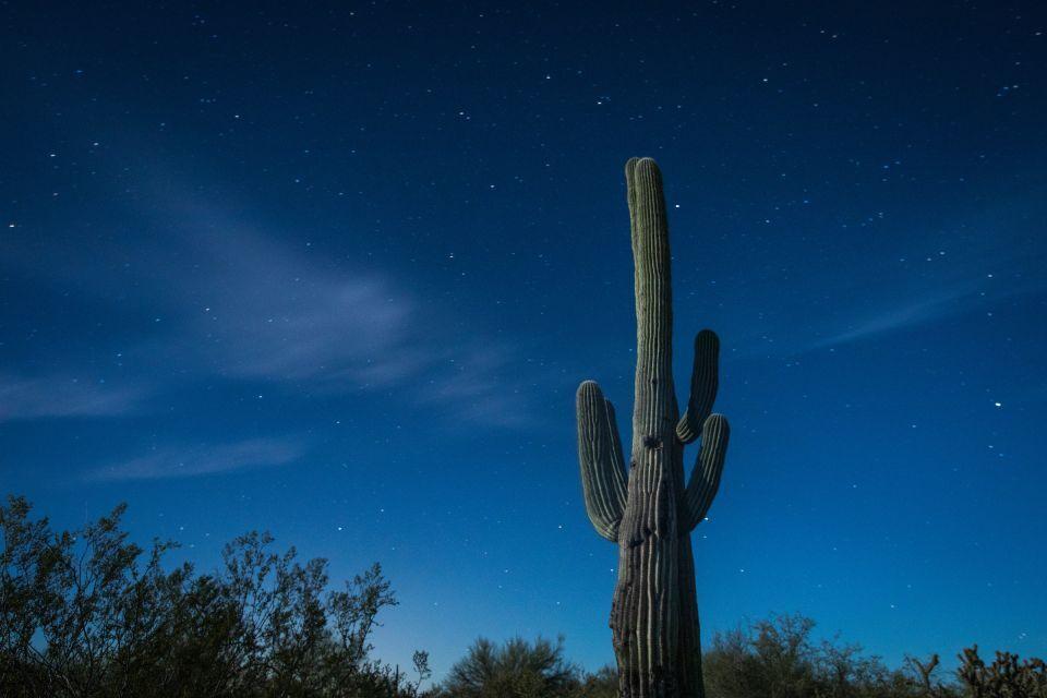 Navigating Night Skies