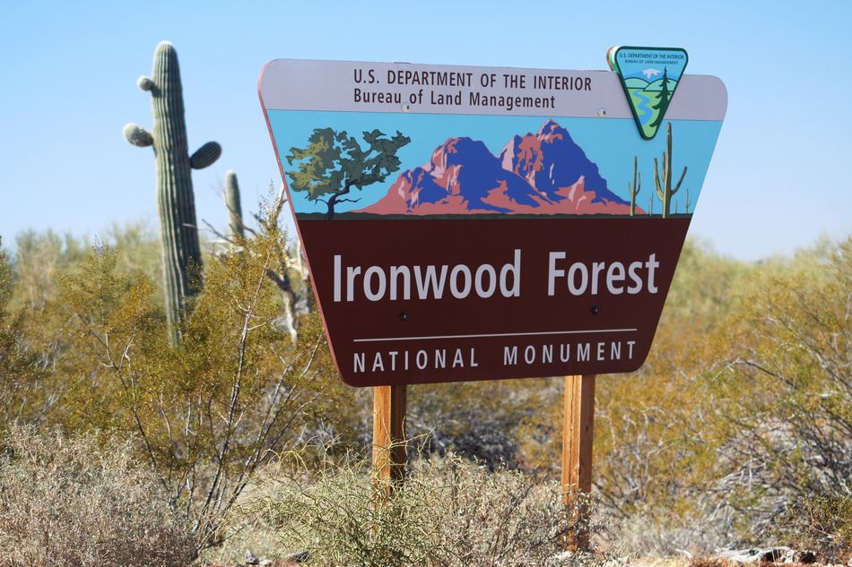 Ironwood Forest Sign