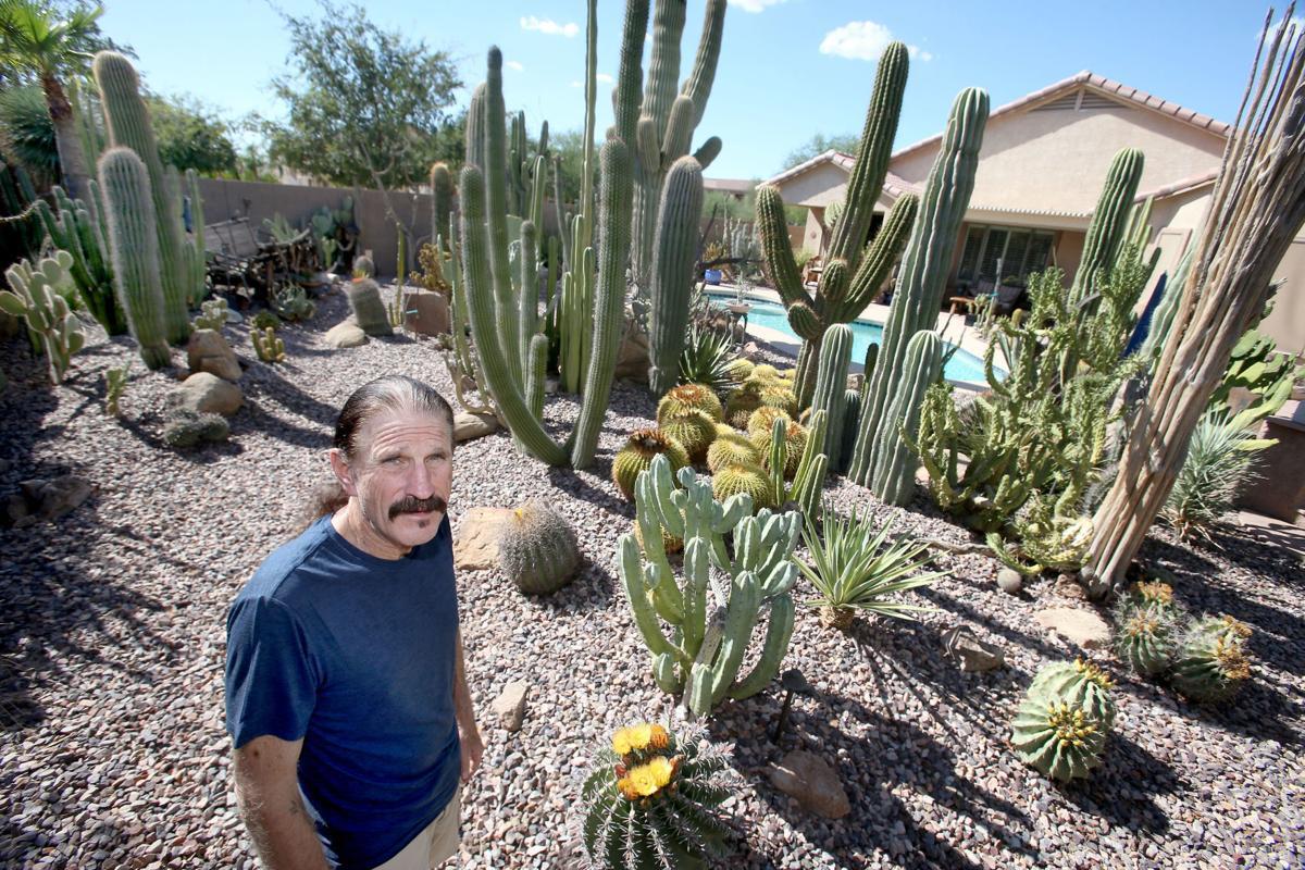 Cactus Dan Has Watched His Cg Garden Grow To 300 Plants Area