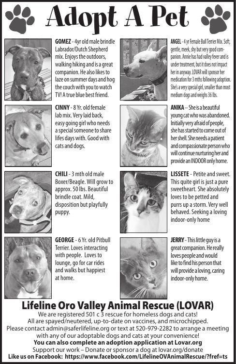 Lifeline Oro Valley Animal Rescue, 8/31/19