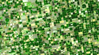 Kansas Farms