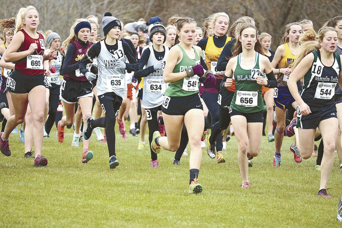 Cross-country runners  go to State