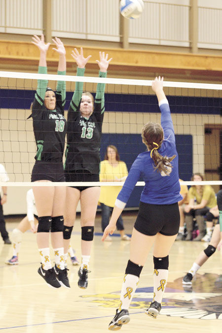 Volleyball team takes two wins