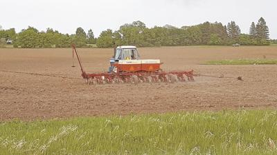 Poor growing conditions elsewhere may help local farmers