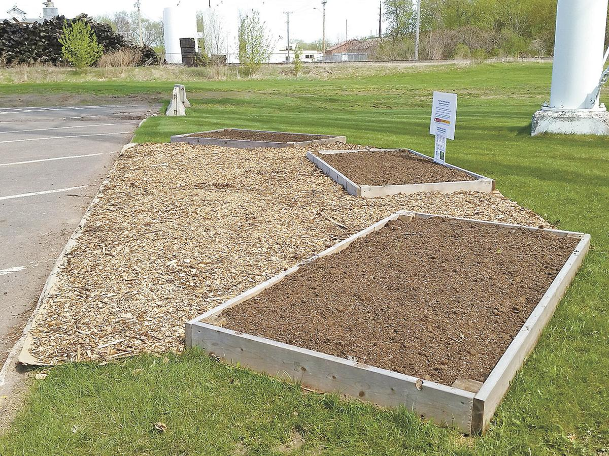 Raised beds by library water tower