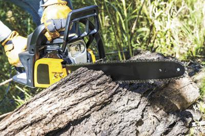 Chainsaw safety tips | News | pinecitymn com