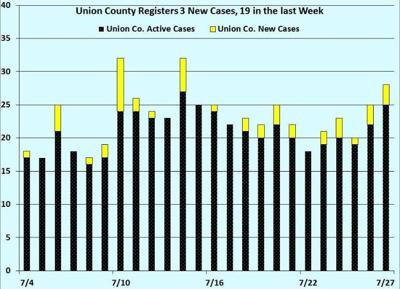 Union County Cases
