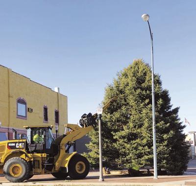 Community Christmas Tree