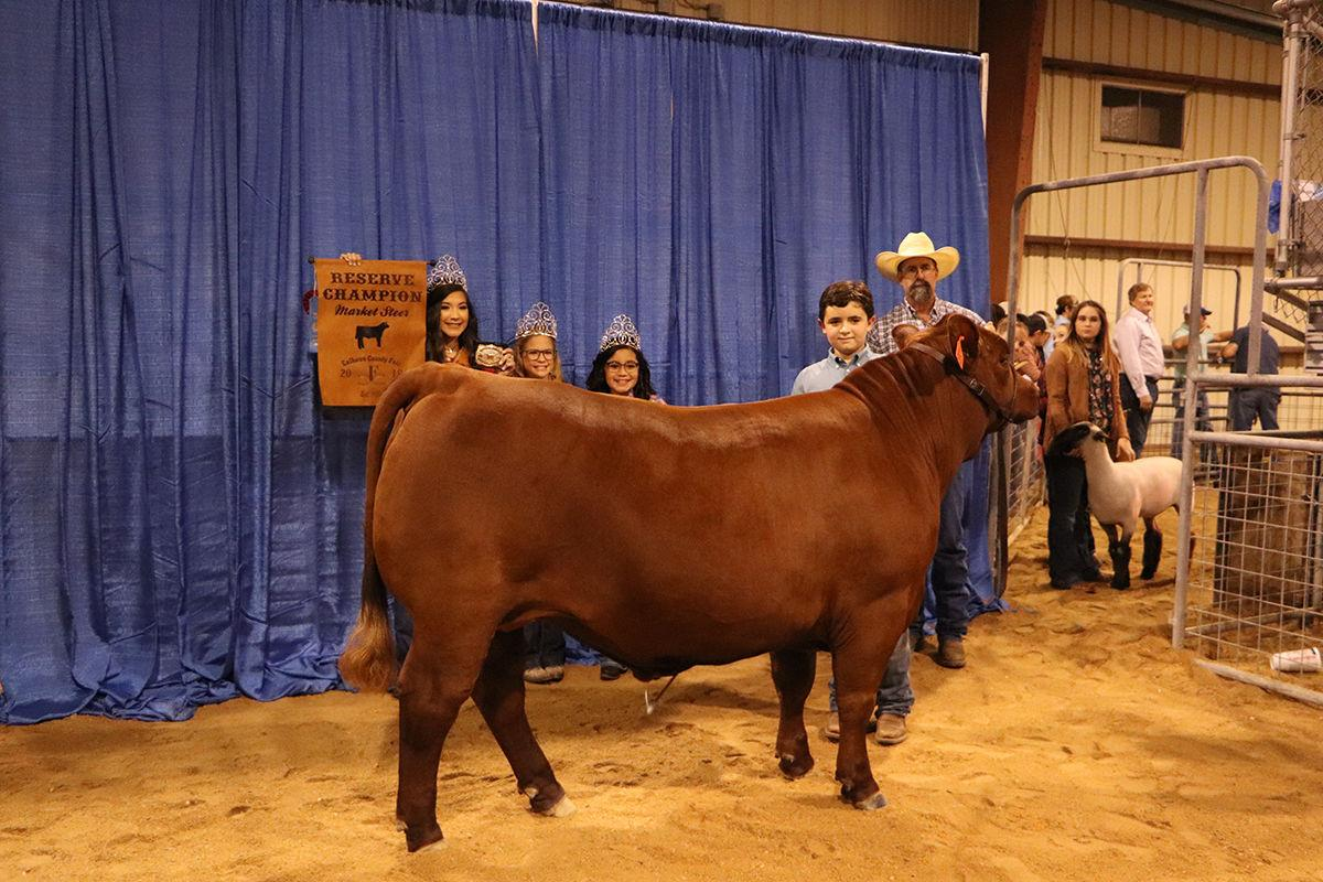 Reserve champion steer - Justice Epley