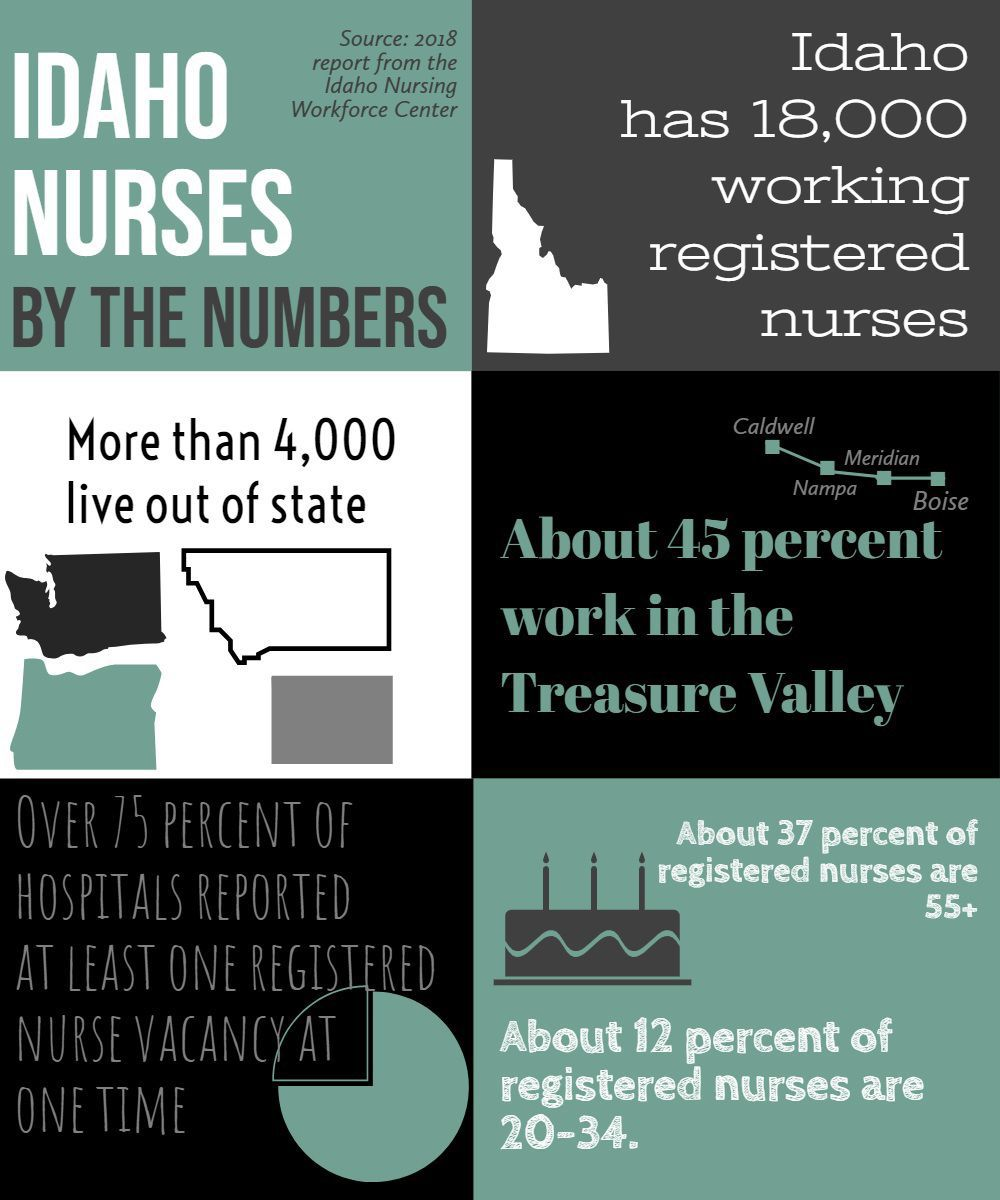 Idaho Nurses by the numbers