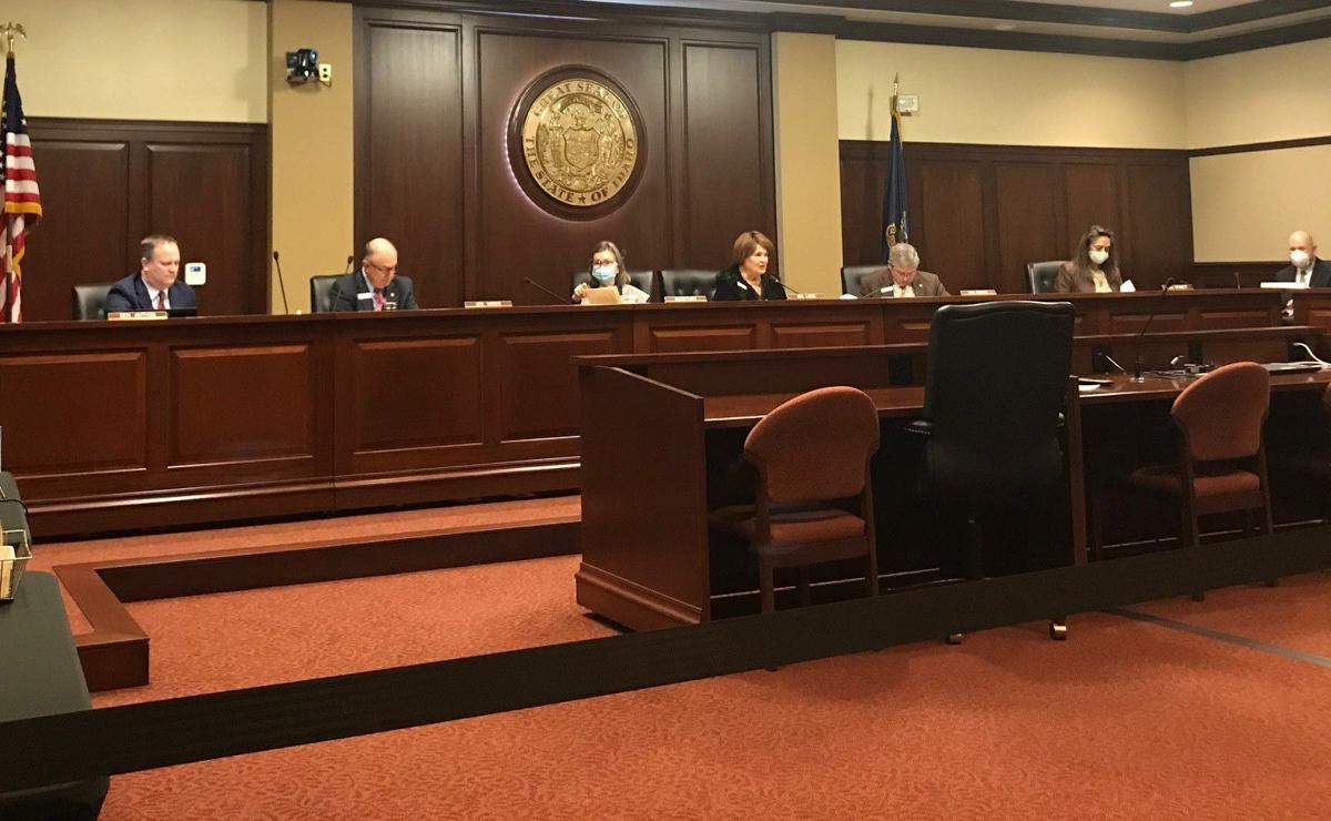 Senate State Affairs 1-13-21