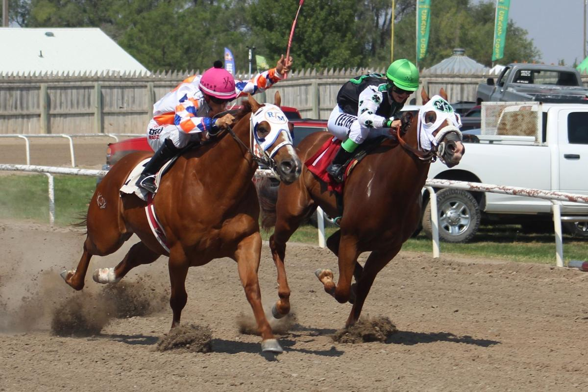 Horse Racing at EISF