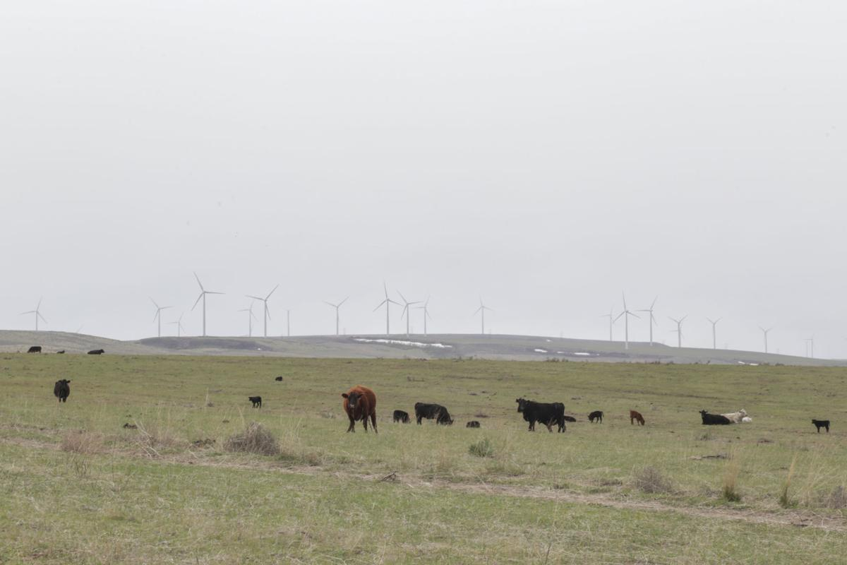 windmills and farms
