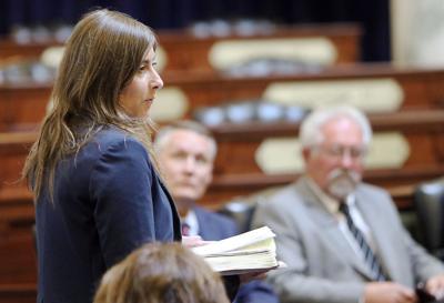 State Legislators unofficial Special Session (copy)