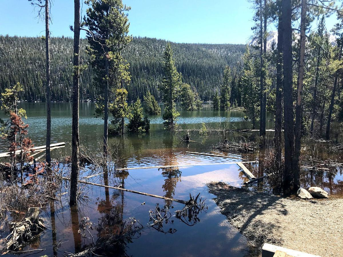Stanley Lake inlet 5.20.jpg
