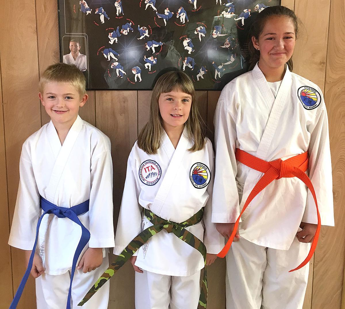 3 advance in martial arts