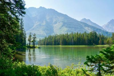 Grand Teton National Park, WY, USA