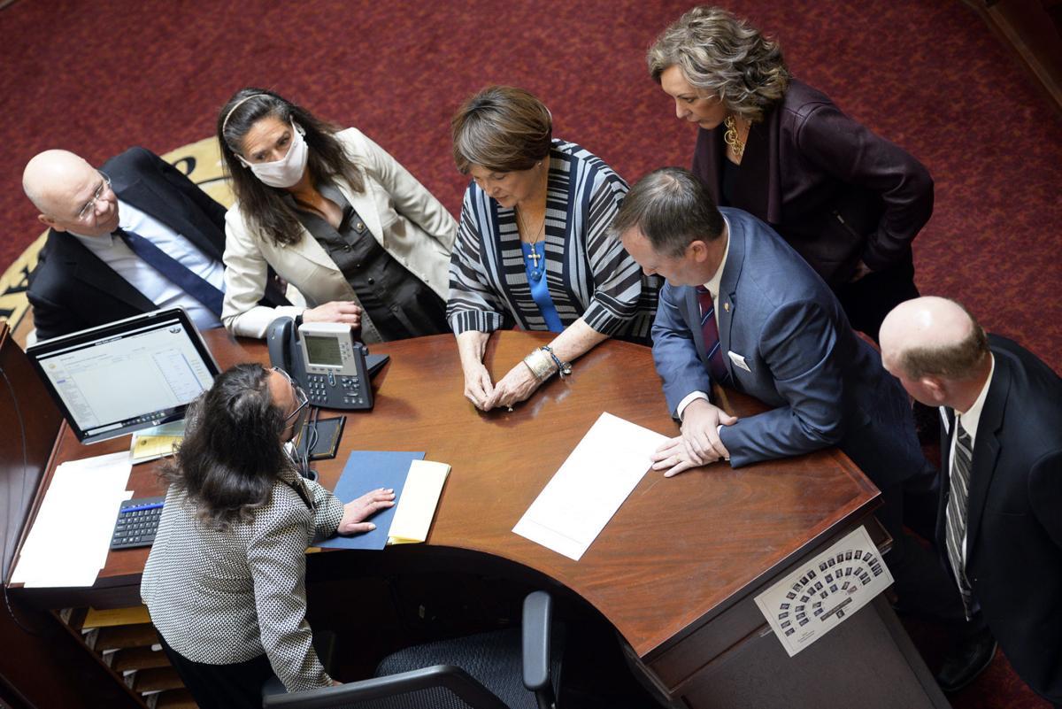 Legislature01.JPG
