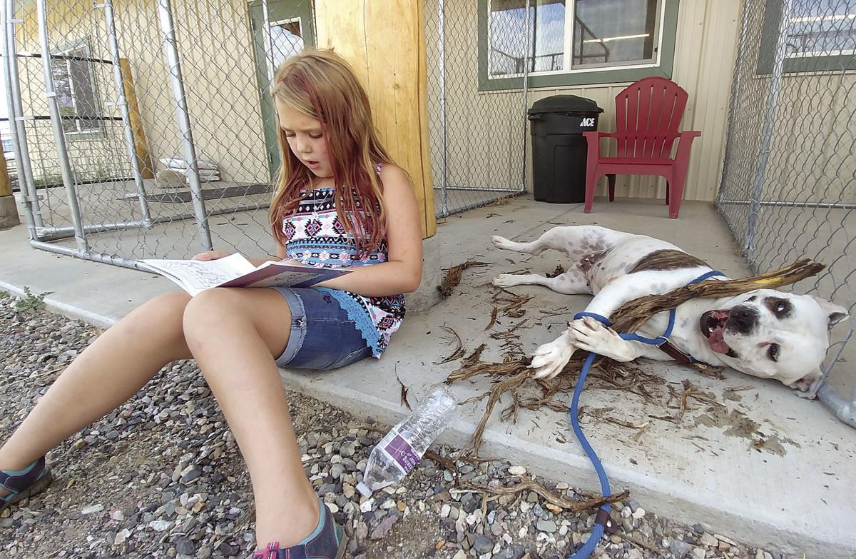 When children read to animals, both benefit