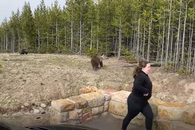 woman near bears