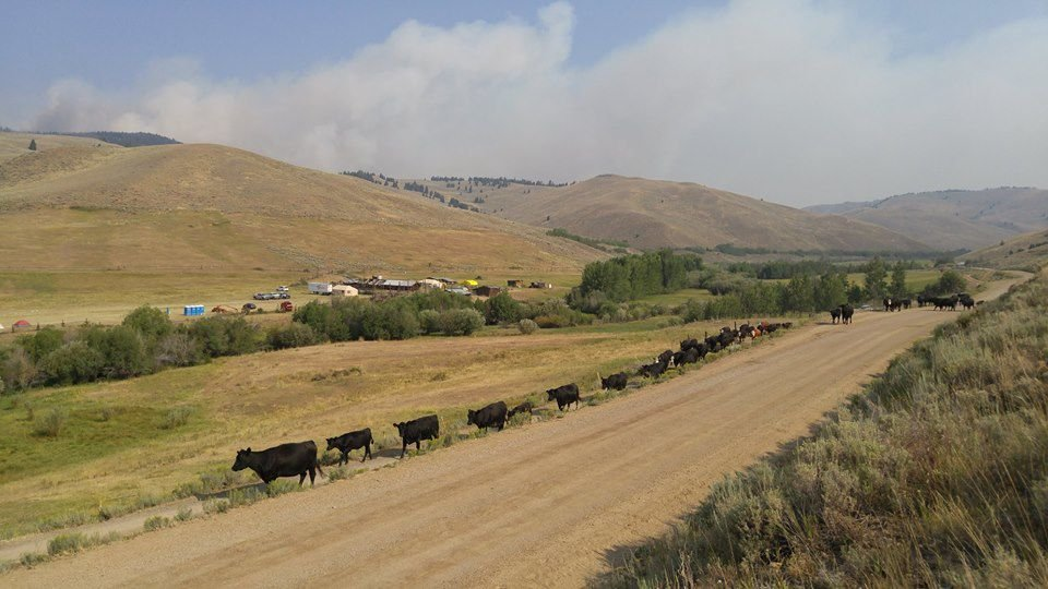 Officials working to contain Rabbit Foot fire