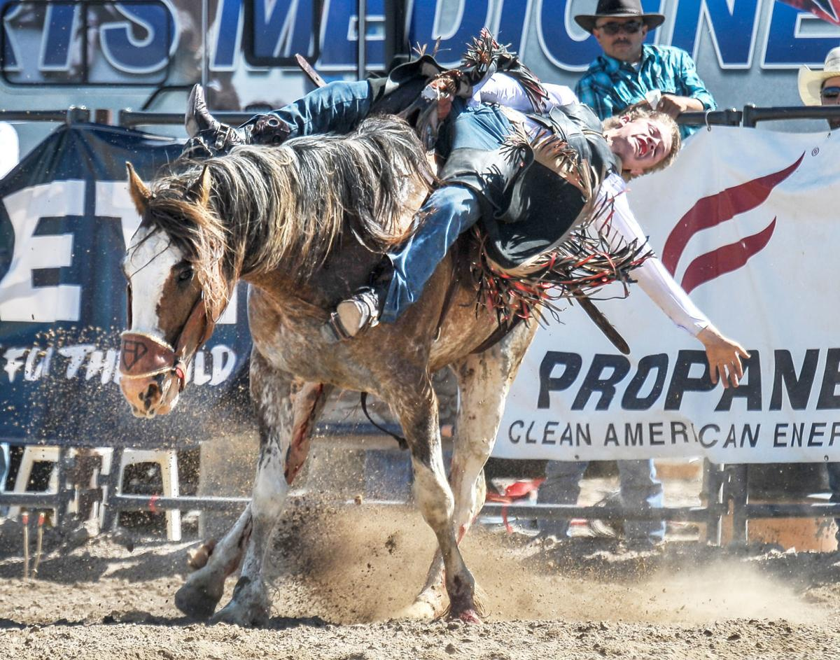 Cooper Cooke state rodeo